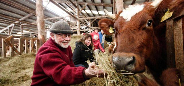 """Bauernhof statt Altenheim: ,,Hier werde ich gebraucht"""""""